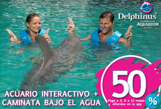 Acuario Interactivo + caminata bajo el agua $1,716