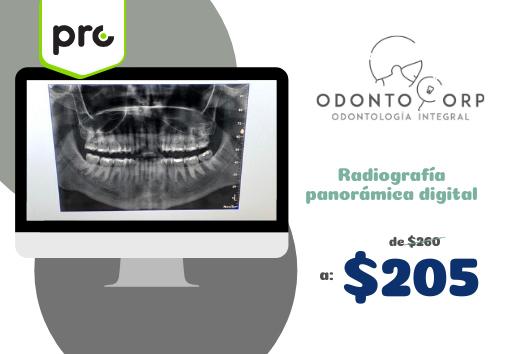 Radiografía panorámica digital $205