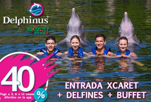 40% Xcaret Dolphin Tour niño o adulto
