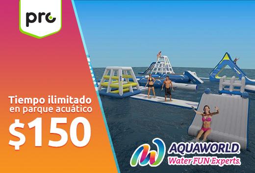 Tiempo ilimitado en parque acuático $150