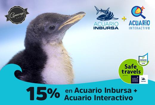 15% en Acuario Inbursa+ Acuario Interactivo