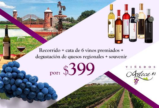 Recorrido + cata de 6 vinos premiados + degustación por $399
